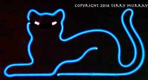 cat-neon
